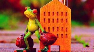 家を出てくカエル